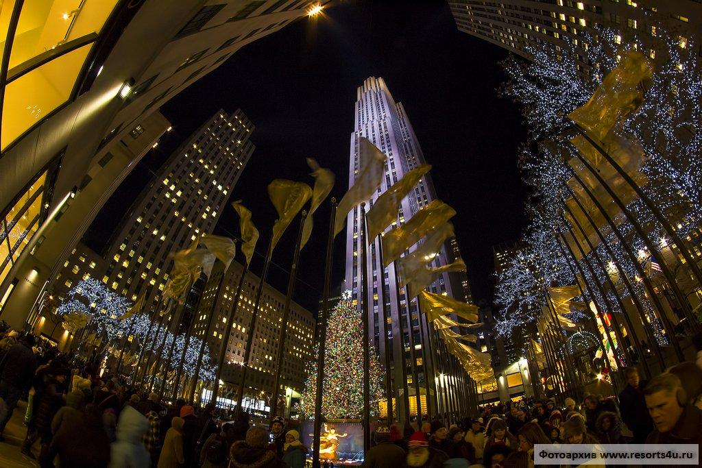 Самая большая рождественская елка Нью-Йорка