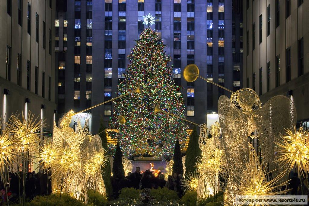 Лучшая новогодняя елка Америки