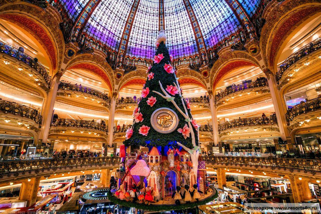 Самая красивая новогодняя елка Парижа