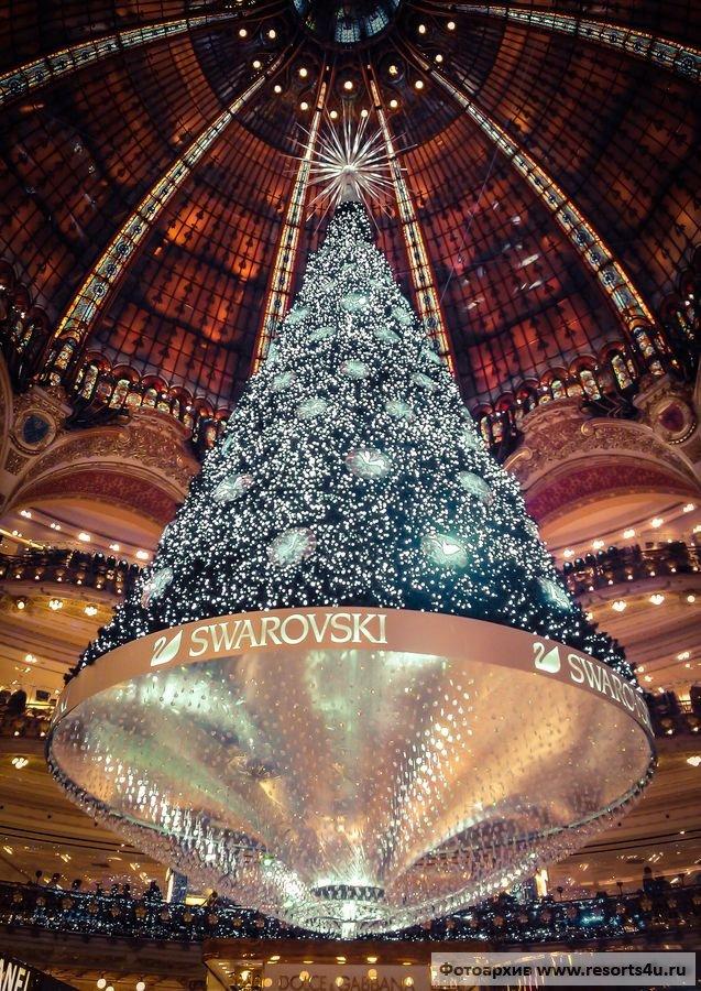 Лучшая новогодняя елка из Франции