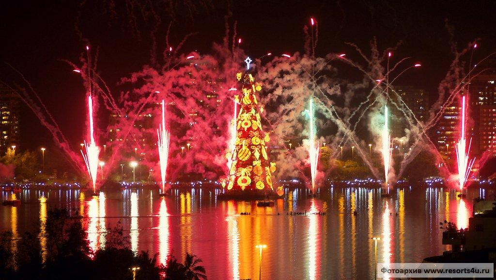 Самая необычная новогодняя елка Бразилии